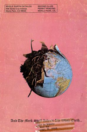 Wires or Worms: Image from the Whole Earth Catalog courtesy http://rhizome.org/editorial/2011/may/11/whole-earth-catalog/